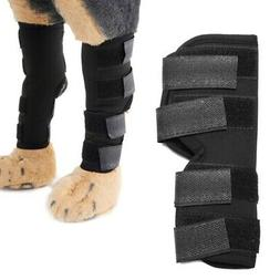 Therapeutic Knee Brace For Dogs Hock Protector Dog Rear Leg